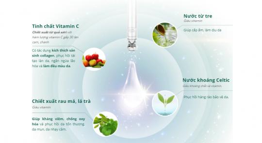 Thành phần Serum Vitamin C Ampoule
